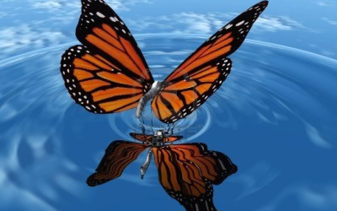 Networking, Relationships And The Butterfly Effect